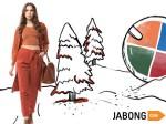 Flipkart S Myntra Acquires Jabong