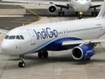 Indigo Cautions Against Fake Job Offers