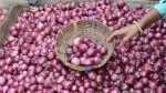 Central Government Relaxes Ban On Onion Export Can Be Exported From Chennai Port Only