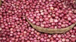 Onion Prices Are Rising Sharply On Tuesday The Selling Price Touched Rs 96 In Kerala
