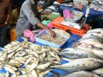 Bird Flu Fish Prices Are Rising In Various States Of The Country