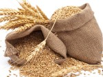 Grain Exports From India Rose Sharply