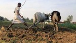 How To Get Rs 3000 A Month With Pm Kisan Samman Nidhi Yojana Step By Step Guide