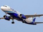 Indigo Offers Unlimited Free Tickets For Olympic Gold Medallist Neeraj Chopra For One Year