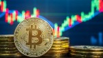 Cryptocurrency Prices Today 10th September 2021 Polkadot Leads The Way