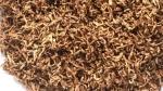 ഒരു കിലോ ചായപ്പൊടിയ്ക്ക് 75000 രൂപ; റെക്കോർഡ് ലേല വിലയുമായി മനോഹരി ഗോൾഡ് തേയില