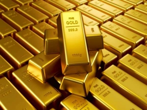 Gold Holdings India 10th Place