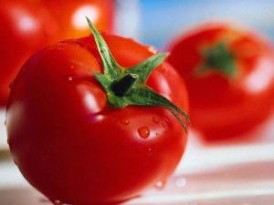 Tomato Prices Go Through The Roof