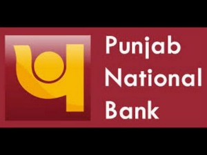 Will Take Appropriate Supervisory Action Pnb Fraud Case R
