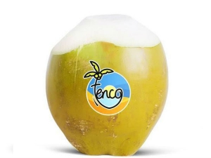 Quit Accenture Job Start Up Tenco Fresh Coconut Water Suppl