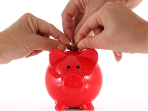 Small Savings Schemes Interest Rate May Not Fall Much