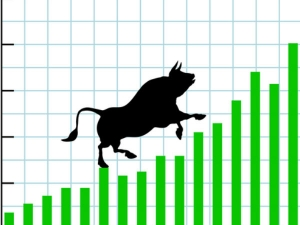 Bull Run Market Rupee Becoming Strong