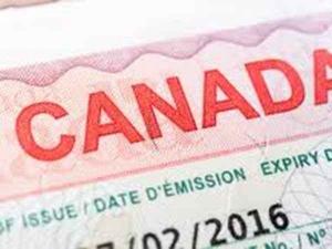 Top Job Demands In Canada