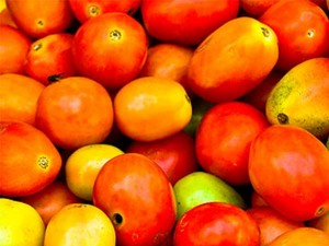 The Price Tomatoes Has Shot Up