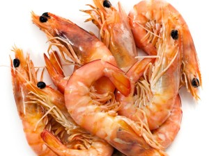 India S Seafood Exports At All Time High