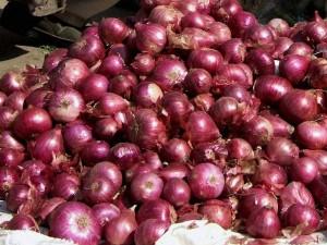 Central Govt Bans Onion Exports