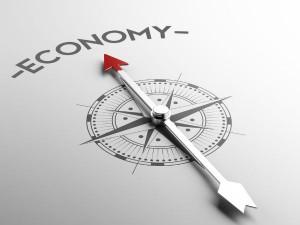 Economic Survey Positive And Negative Reactions