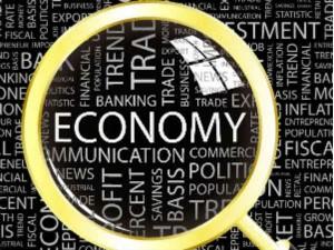 What Is Economic Survey