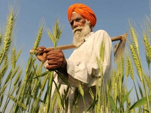 Government To Soon Launch Farmer Friendly Crop Insurance Scheme