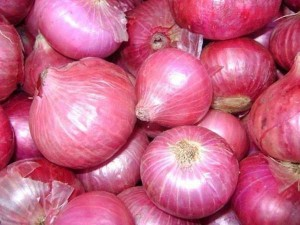 Immediate End To The Biggest Onion Crisis Of