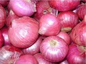 Onion Prices Score Century In Kerala