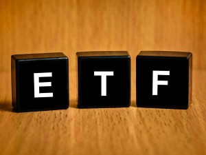 Bharat Bond Etf Will Open This Thursday