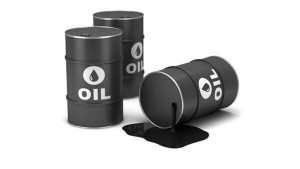 Government Planning To Diversify Crude Oil Imports
