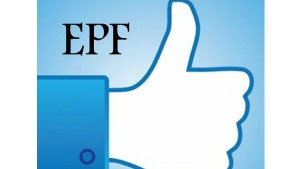 Errors In The Pf Account Can Corrected Online
