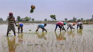 How The 2020 21 Central Budget Will Benefit Farmers