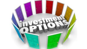 Some Of The Investments Suited For Salaried People