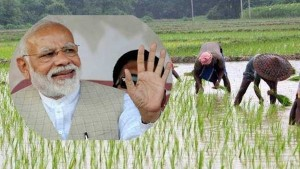 Government Distributed Rs 50 850 Crore To Farmers Through Pm Kisan Program
