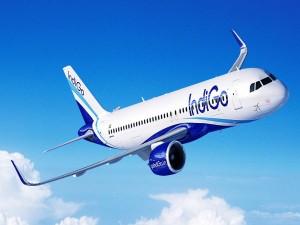 Vande Bharat Mission Phase 4 238 Indigo Flights To India From Qatar