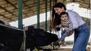 Delhi Based Dairy Farmer Kanika Yadav Net Worth Is Now Rs 7 Cr By Selling Milk
