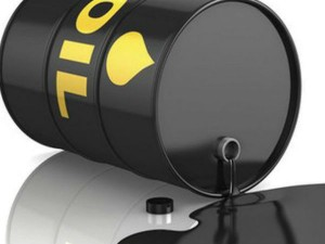 India And Us Signs Mou On Strategic Petroleum Reserve Operations And Maintenance